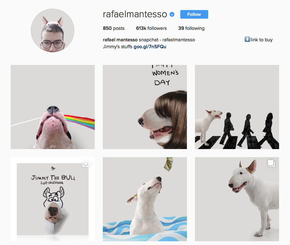 @rafaelmantesso Favourite Instagram animals