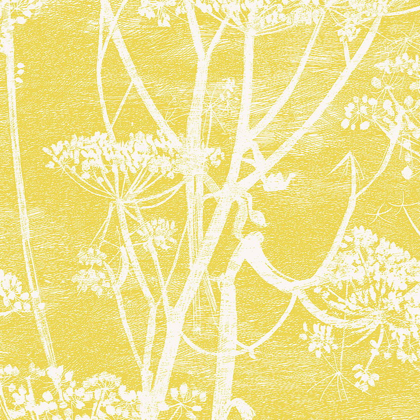 'Cow Parsley' wallpaper in yellow, £76 per roll, Cole & Son