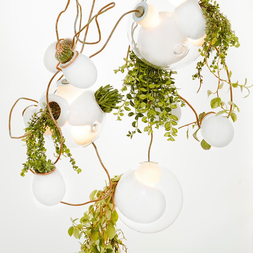 '38 Series' pendant light by Omer Arbel for Bocci, £1,750 (plants not included), Heal's (heals.co.uk)