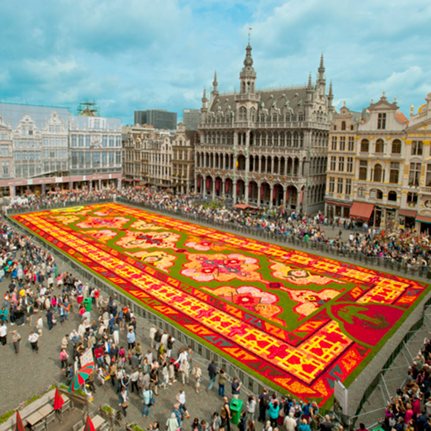 Brussels Flower Carpet Elle Decoration Uk